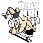 عضله سینه ای پرس زیر سینه دمبل