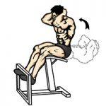 عضلات شکمی دراز نشست روی نیمکت
