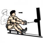 عضله زیربغل - زیر بغل قایقی