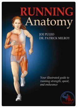 آناتومی بدنسازی دویدن به همراه برنامه تمرینی و آموزش