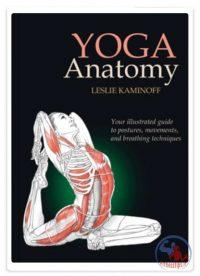 آناتومی تمرینات یوگا