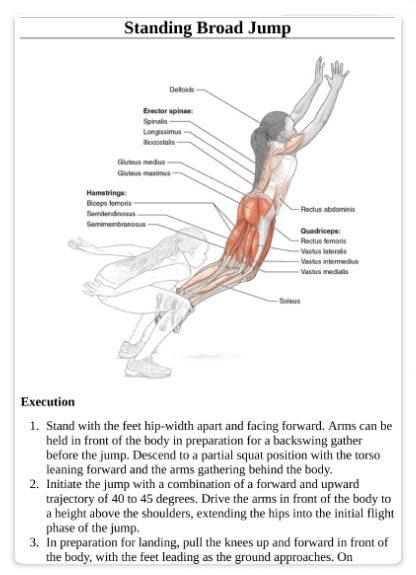 آناتومی پلایومتریک به همراه برنامه تمرینی و آموزش