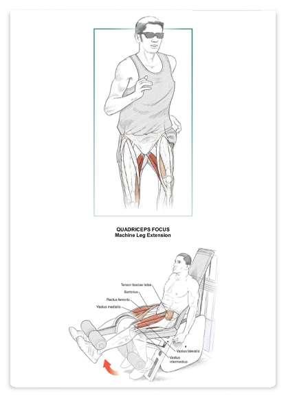 آناتومی بدنسازی دویدن به همراه برنامه تمرینی کاملا تصویری