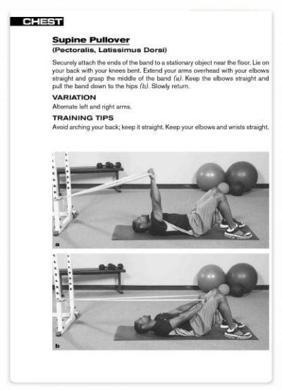تمرین با کش ورزشی