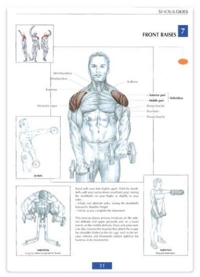 آناتومی تمرینات قدرتی به همراه آموزش تصویری