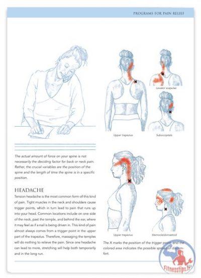 تصاویر حرکات کششی مجموعه کامل به همراه آموزش گام به گام