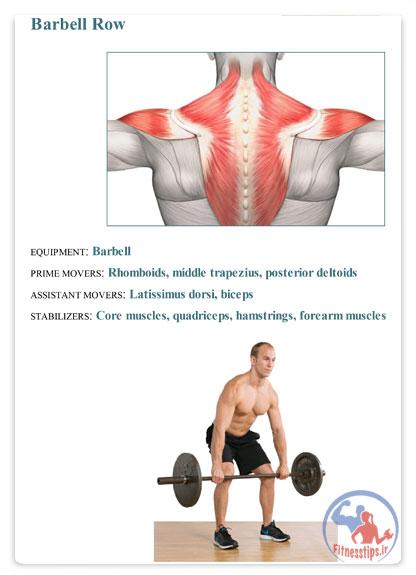 تمرینات بدنسازی وزنه آزاد