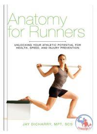 آناتومی برای دویدن