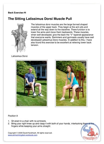 تمرینات ایزومتریک در بدنسازی