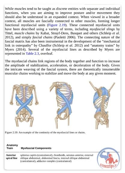 کتاب آناتومی پیلاتس