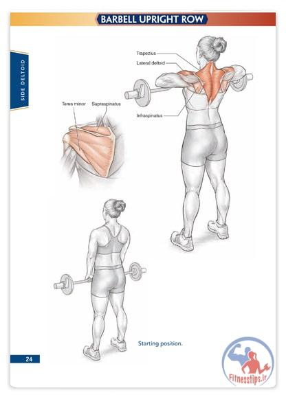 کتاب آناتومی تمرینات پرورش اندام