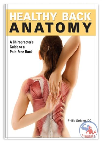 آناتومی حرکات اصلاحی کمر درد