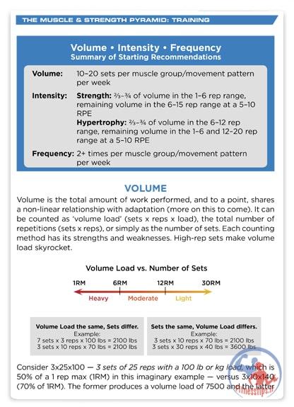 نقش تمرین در عضله سازی