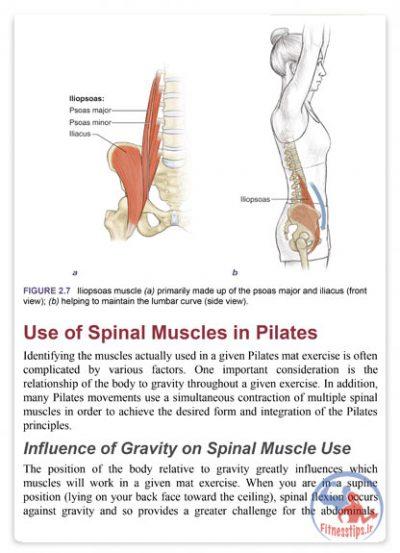 کتاب آناتومی ورزش پیلاتس