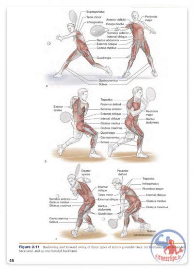 کتاب ورزش درمانی آسیب هاي شانه