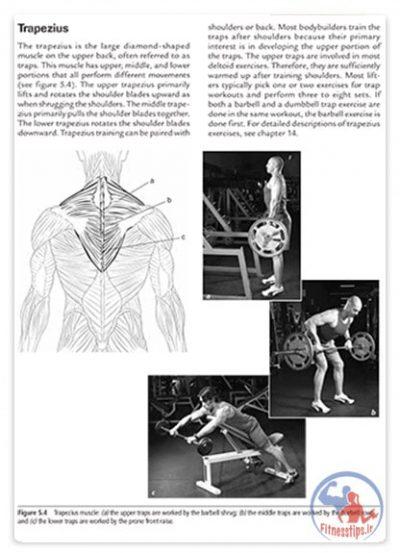 کتاب دانشنامه قدرت و عضله