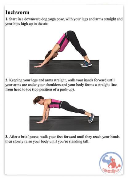 کتاب کاهش توده عضلانی یا سارکوپنی