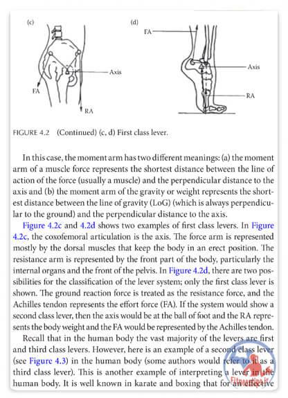کتاب بیومکانیک ورزشی در هنرهای رزمی