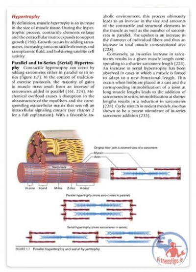 کتاب علم و توسعه هایپرتروفی عضلانی