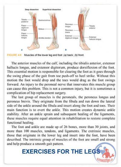 کتاب آناتومی بدنسازی سه گانه