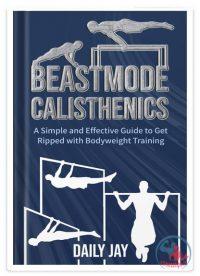 کتاب آموزش تمرینات کلیستنیکس