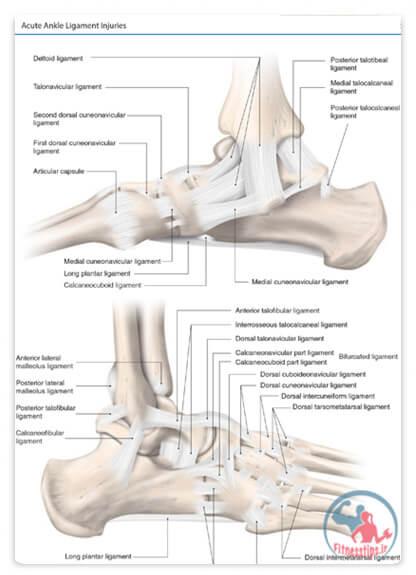 کتاب آسیب ورزشی پا